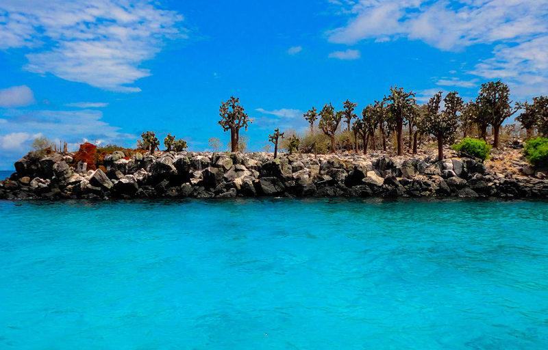 Galapagos Holidays