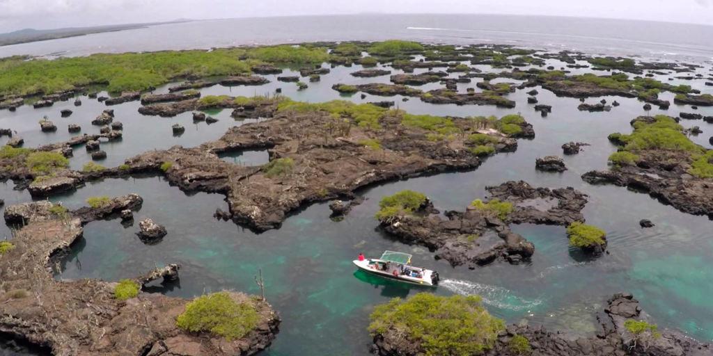 Galapagos Islands Vacations