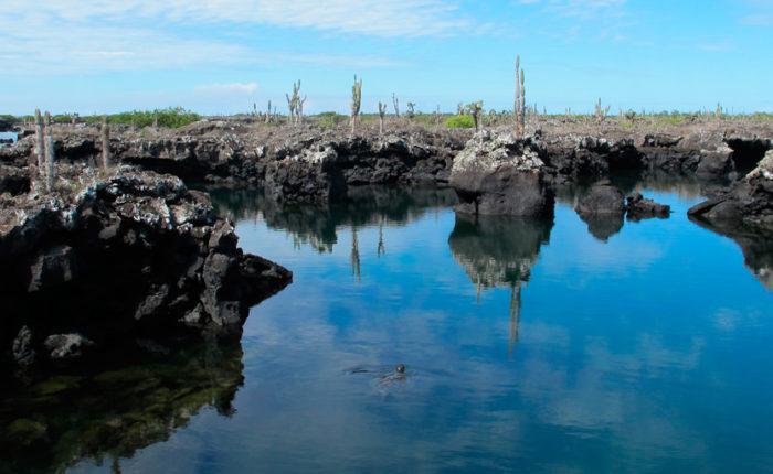 Trip to Galapagos